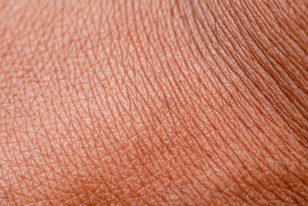 Textura da pele. pele escura da macro de mão de mulher. Foto Premium