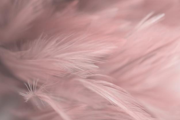 Textura da pena das galinhas do pássaro do borrão para o fundo, fantasia, sumário, cor macia do projeto da arte. Foto Premium