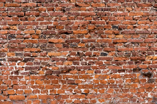 Textura da superfície da parede Foto gratuita