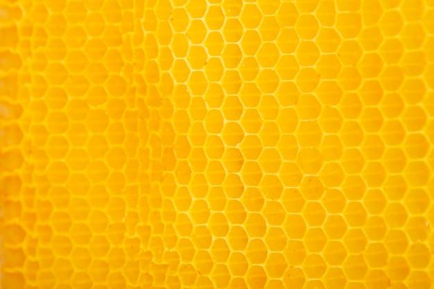 Textura de favo de mel amarela Foto gratuita