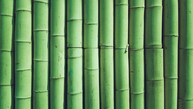 Textura de fundo de bambu Foto gratuita