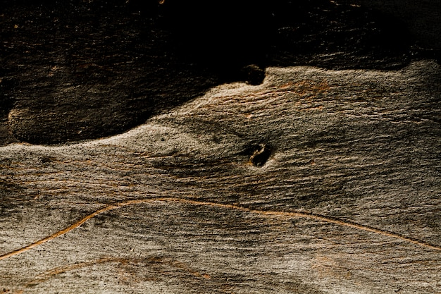 Textura de madeira escura com espaço de cópia Foto gratuita