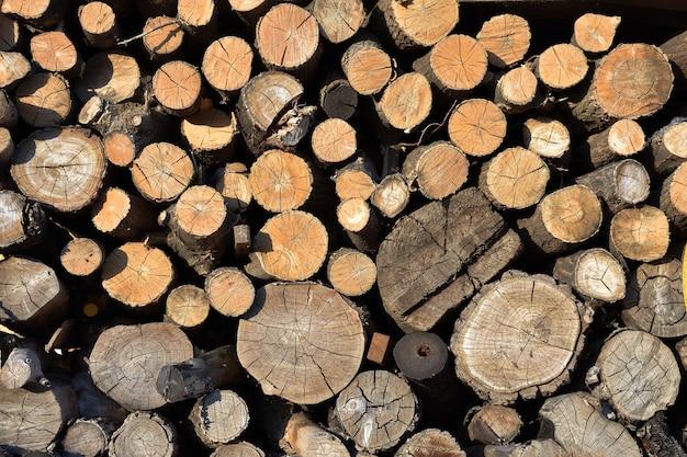 Textura de madeira serrada, fundo de lenha empilhada Foto Premium