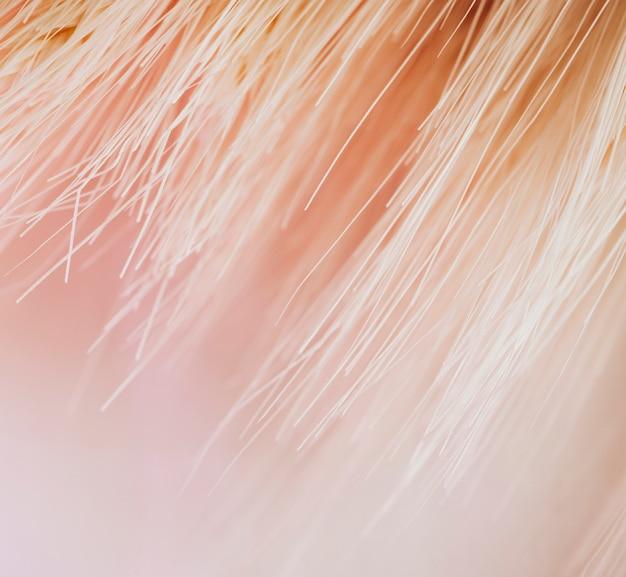 Textura de muitas fibras de luz na cor rosa Foto gratuita
