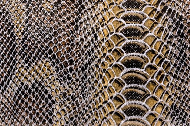 Textura de pele de cobra Foto Premium