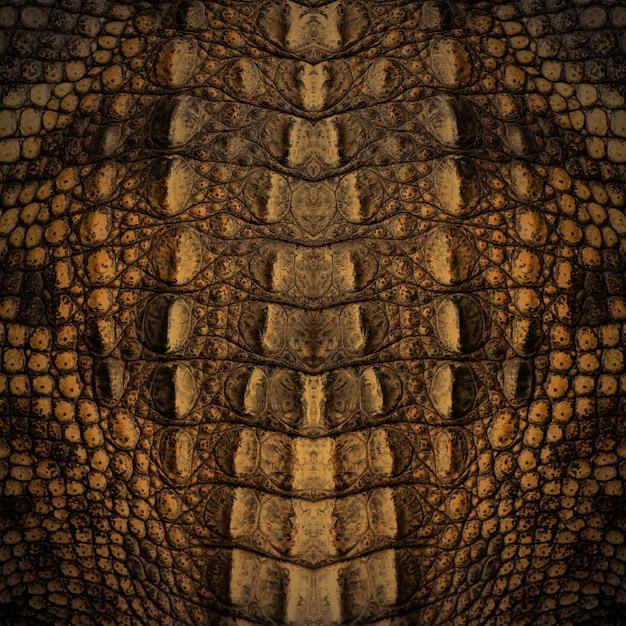Textura de pele de crocodilo Foto Premium