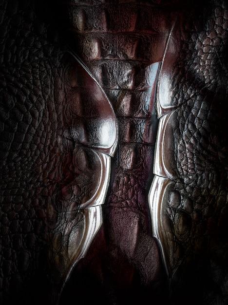 Textura de pele de dinossauro Foto Premium