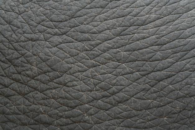 Textura de pele de elefante, tailândia Foto Premium