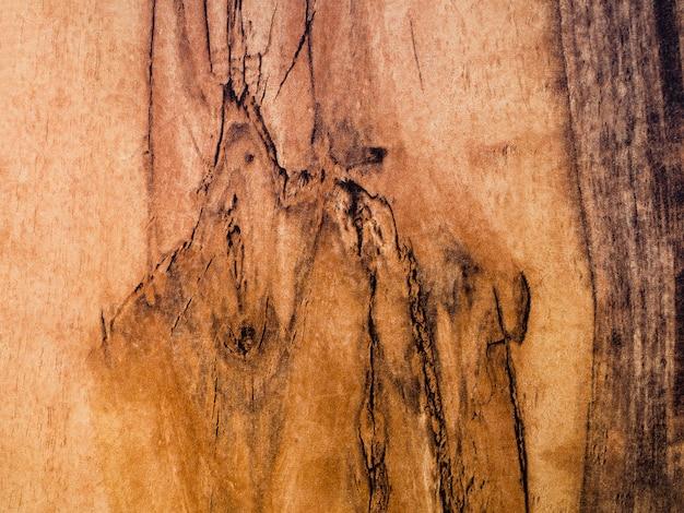 Textura de superfície de madeira close-up Foto gratuita