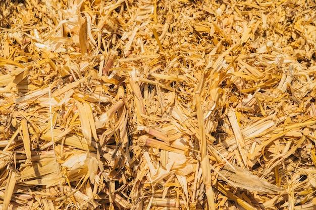 Textura do palheiro. fundo de feno amarelo seco. indústria agrícola. Foto Premium