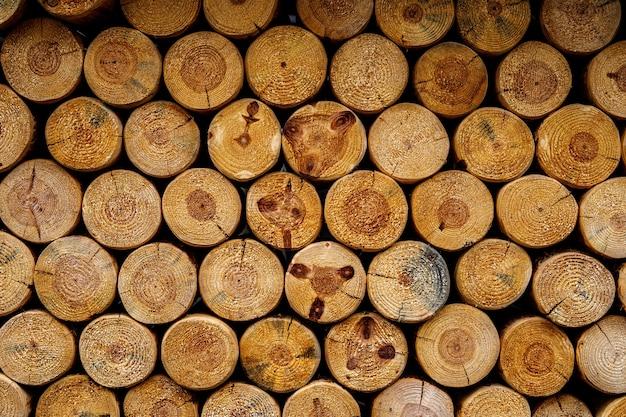 Textura redonda de lenha. parede de fundo de toras de madeira empilhadas Foto Premium