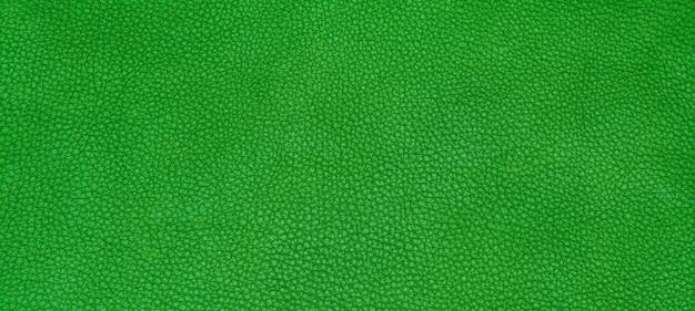 Textura verde de couro Foto gratuita