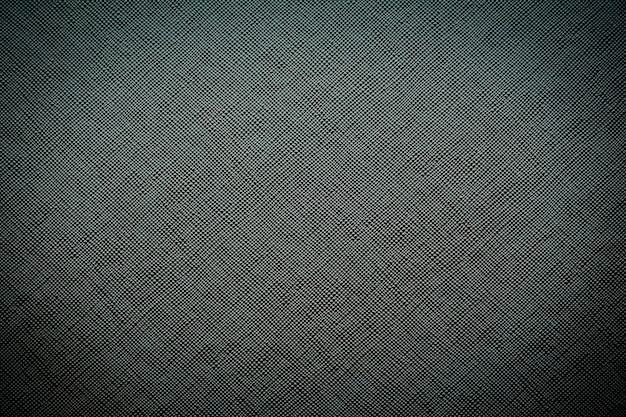 Texturas de couro preto Foto gratuita