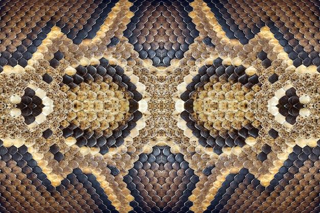 Texturas e padrões da jibóia. Foto Premium