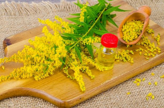 Tintura farmacêutica, extrato de ervas selvagens, flores medicinais em frascos médicos Foto Premium