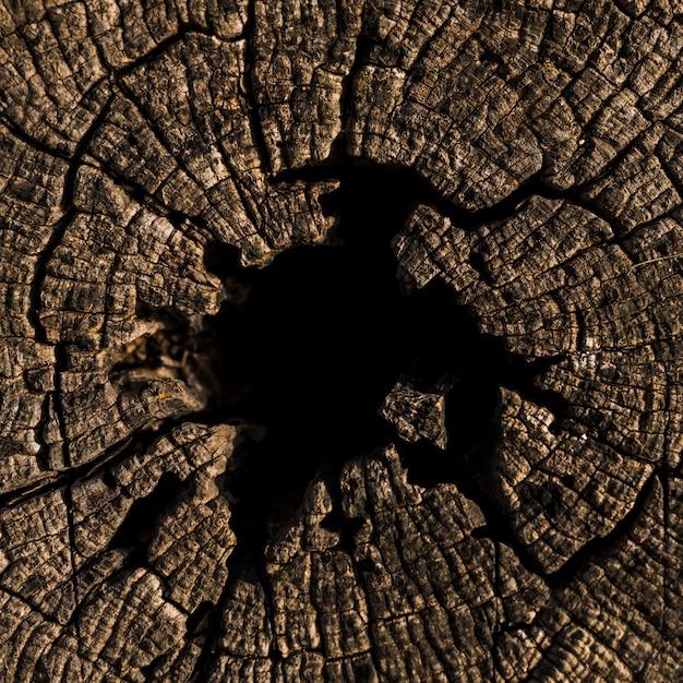 Tiro de quadro completo de madeira texturizada Foto gratuita