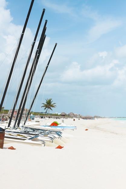 Tiro longo, barcos à vela, em, a, litoral Foto gratuita