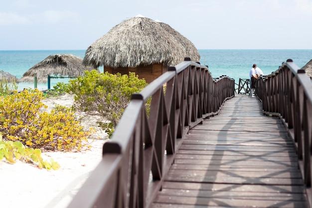Tiro longo, de, madeira, foodbridge, guiando, para, a, praia Foto gratuita