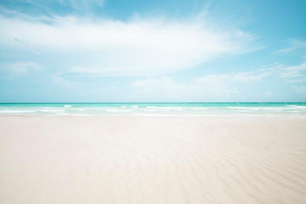 Tiro longo, de, tropicais, praia arenosa Foto gratuita