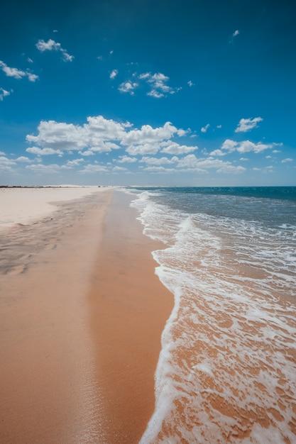 Tiro vertical das ondas espumosas chegando à praia sob o lindo céu azul Foto gratuita
