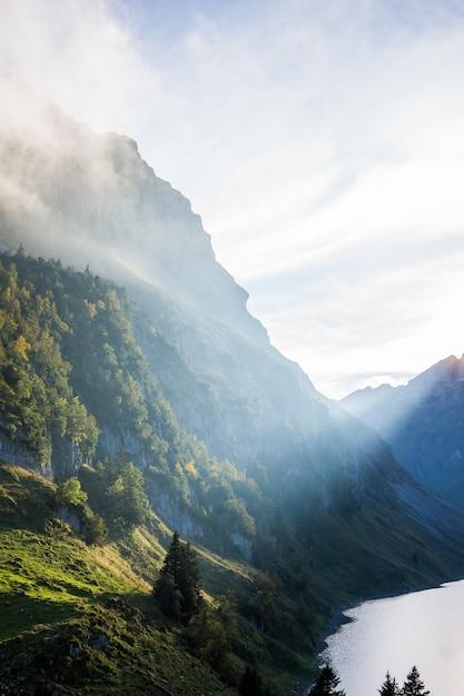 Tiro vertical de montanhas arborizadas perto da água sob um céu nublado durante o dia Foto gratuita