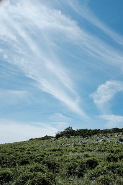 Tiro vertical de pedras em uma colina coberta com grama e plantas sob um céu azul Foto gratuita