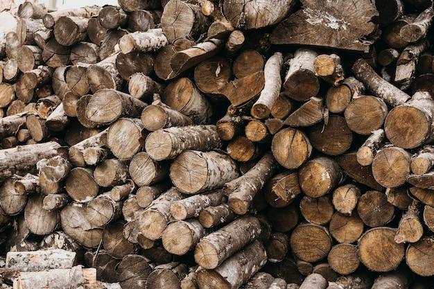 Tocos de madeira para arranjos de inverno Foto gratuita