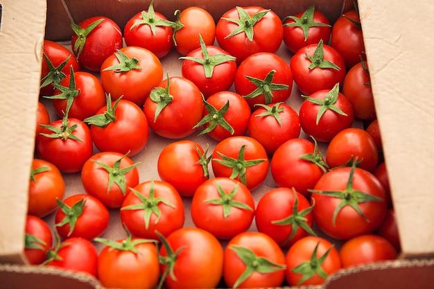 Tomates frescos vermelhos reunidos em uma caixa de cartão para venda. Foto gratuita