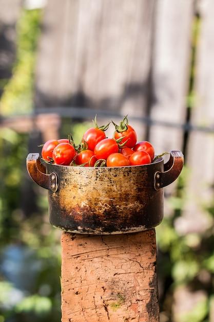 Tomates vermelhos em uma tigela velha em uma placa de madeira ao ar livre Foto Premium