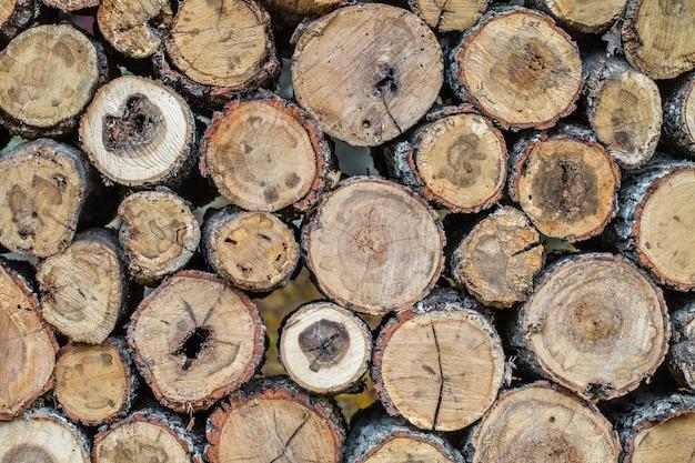 Toras de madeira serradas empilhadas em um rack, um a um. Foto Premium