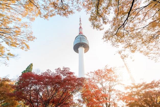 Torre de seoul com as folhas de plátano amarelas e vermelhas do outono na montanha de namsan em coreia do sul. Foto Premium