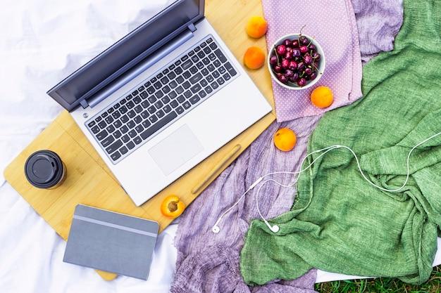 Trabalhar em um laptop em um piquenique na natureza - ao lado de uma tigela de cerejas e damascos Foto Premium