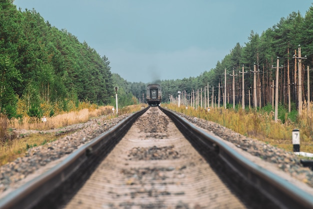 Transporte ferroviário passa por trilhos na floresta. Foto Premium