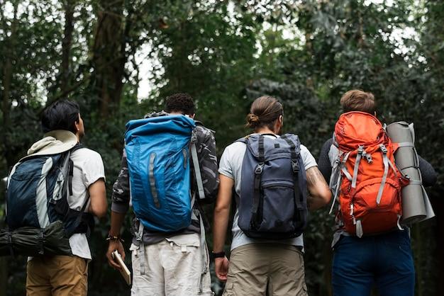 Trekking juntos em uma floresta Foto gratuita