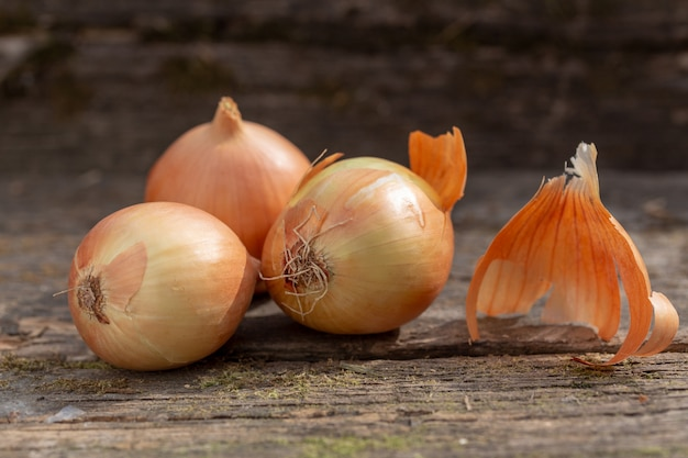 Três cebolas brancas na na placa musgoso velha. fechar-se Foto Premium