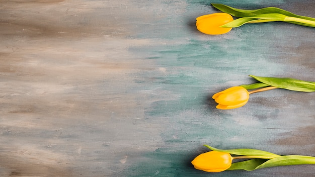 Três, tulipa, flores, ligado, cinzento, tabela Foto gratuita