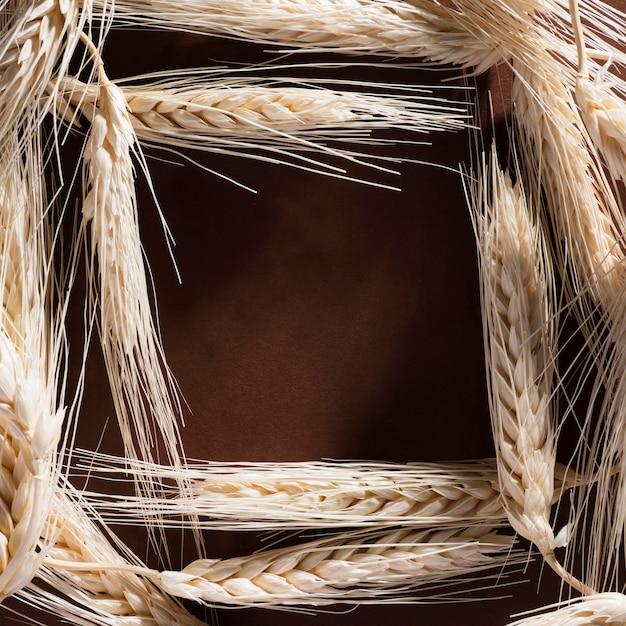Trigo orgânico de vista superior com espaço de cópia Foto gratuita