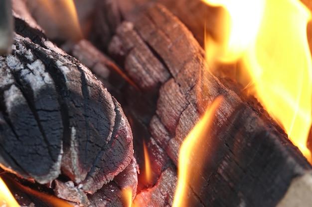 Troncos em chamas Foto gratuita