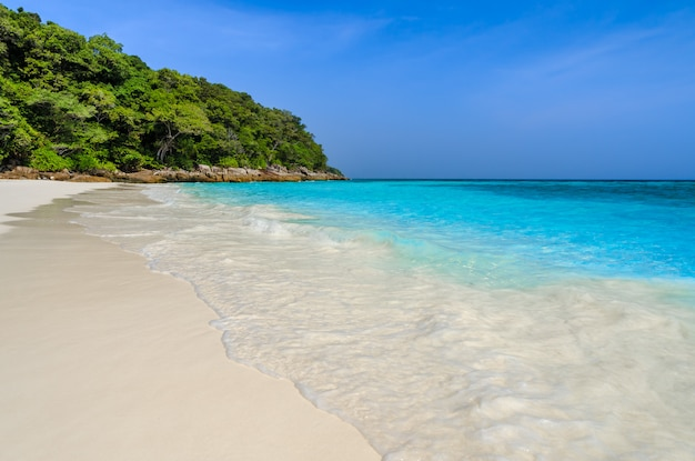 Tropical, areia branca, praia, e, turquesa, claro, água, de, mar andaman, em, phang nga, província, tailandia Foto Premium