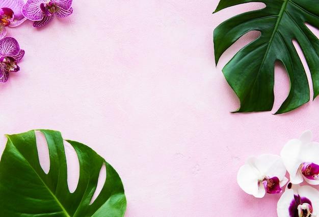 Tropical folhas monstera e orquídea flores Foto Premium