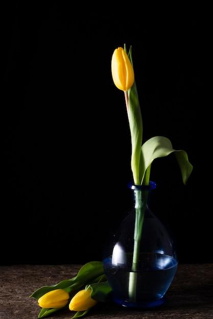 Tulipa amarela em vaso e ao lado Foto gratuita
