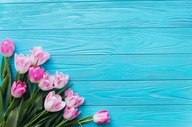 Tulipas cor-de-rosa em um fundo azul de madeira. vista superior e dupla plana. Foto Premium