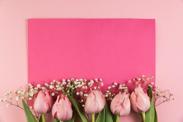 Tulipas e flor de respiração do bebê contra o fundo rosa Foto gratuita