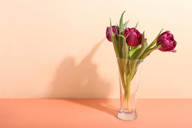 Tulipas em um vaso na brilhante, a sombra da manhã da luz solar. arte conceitual para cartão de felicitações. Foto Premium