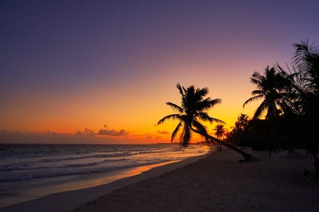 Tulum praia pôr do sol palmeira riviera maya Foto Premium