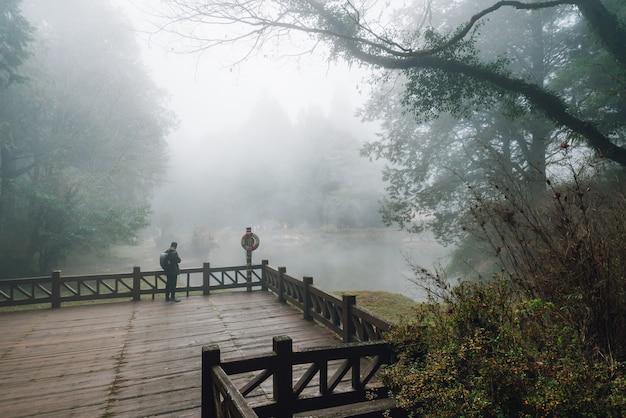 Turismo masculino em pé na plataforma de madeira com árvores de cedro e nevoeiro no fundo Foto Premium