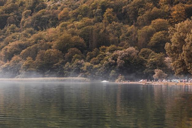 Turista à beira do lago idílico perto da floresta verde Foto gratuita