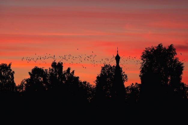 Um bando de pássaros no contexto de uma igreja e um pôr do sol vermelho. um conceito místico Foto Premium