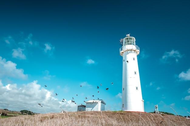 Um belo farol alto e branco no fundo do céu azul. farol do cabo egmont, new plymouth, nova zelândia. Foto Premium