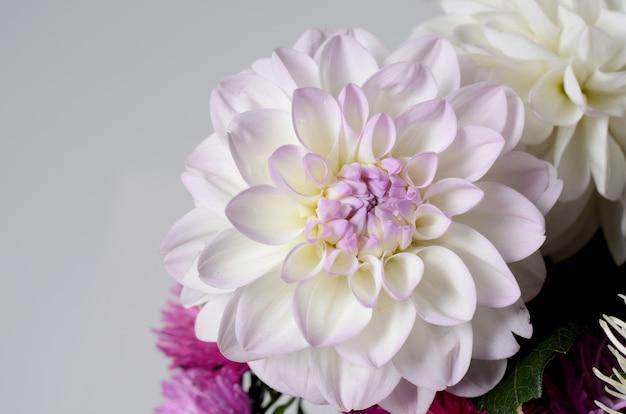 Um buquê de crisântemos coloridos. fundo floral outono Foto Premium
